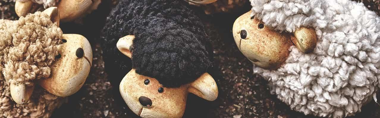 Schwarze Schafe bei Basiskonten