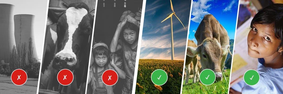 Nachhaltige Banken investieren nicht in kontroverse Bereiche wie Atomkraft, industrielle Tierhaltung oder Unternehmen, die Kinderarbeit fördern. Sie investieren gezielt in nachhaltige Projekte wie erneuerbare Energien, Bio-Landwirtschaft und Bildung.